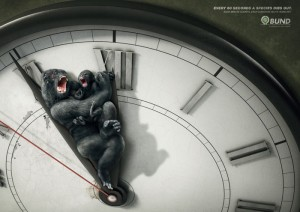Международный фестиваль рекламы «Каннские львы» 2011 подвел итоги