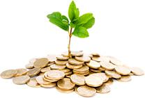 Сущность прямых финансовых инвестиций